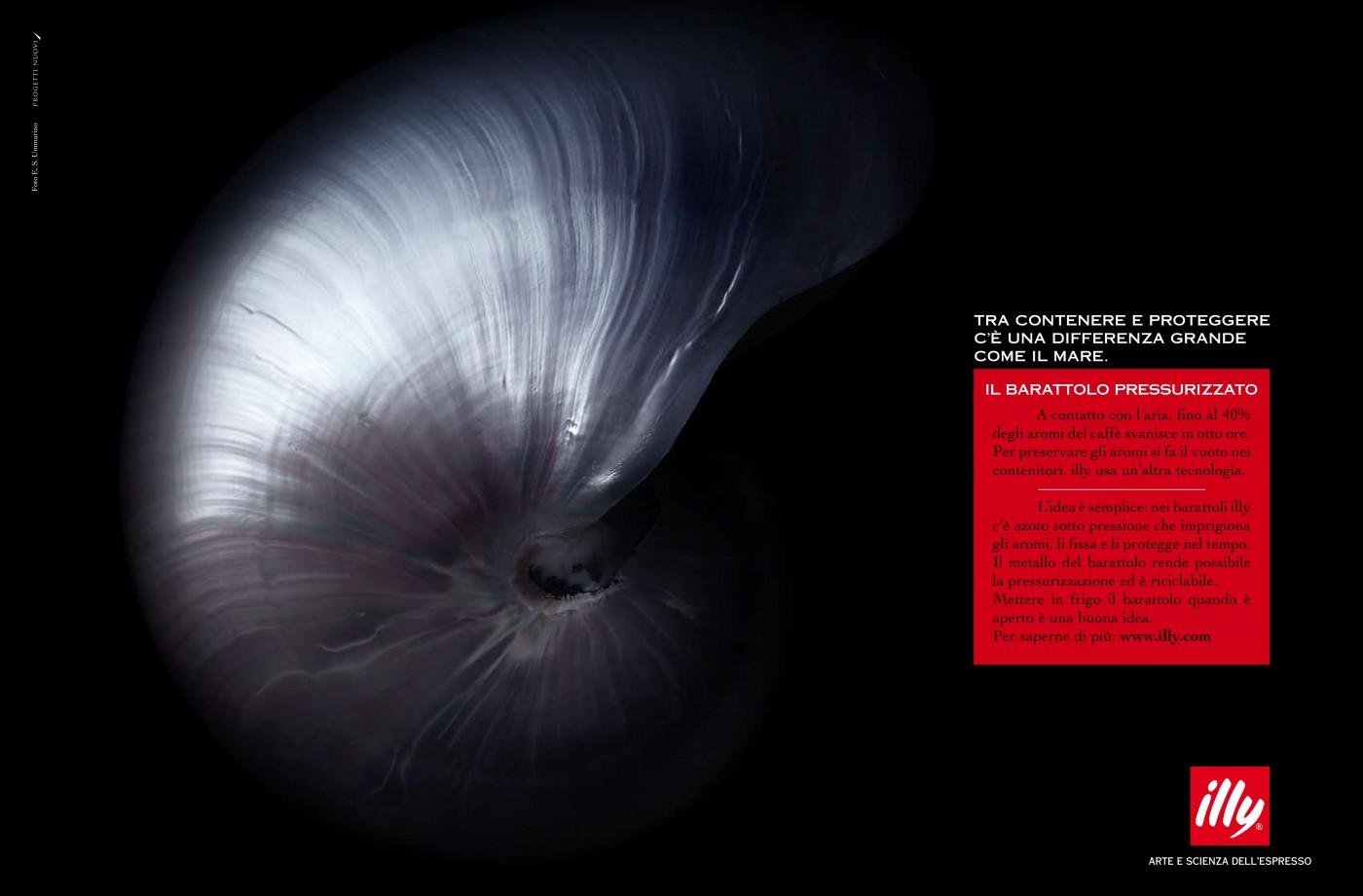 Nautilus-illy-sara massah